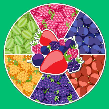 Info graphics. Berry Diagram. Icon on the food theme. Vector illustration Vektorové ilustrace