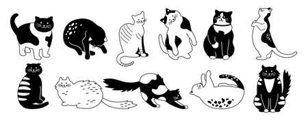 Cat character collection. Bundle cute flat cartoon design pet set. Different kitty breeds. Funny cats sitting, sleeping. Monochrome hand drawn animals contour lines. Isolated vector illustration Illustration