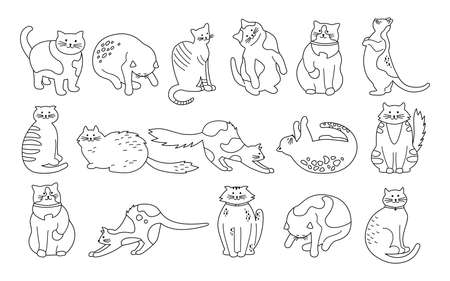 Cat character collection. Black flat cartoon line set. Different kitty breeds, pet characters. Contour funny cats sitting, sleeping. Different stripes spots. Hand drawn isolated vector illustration