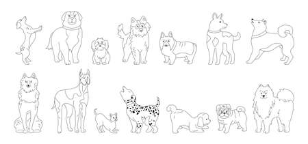 Dog character linear cartoon collection. Funny line different breeds dogs sketch flat style. Outline hand drawn friendly animals husky, corgi, pug and dachshund. Isolated vector illustration Vettoriali