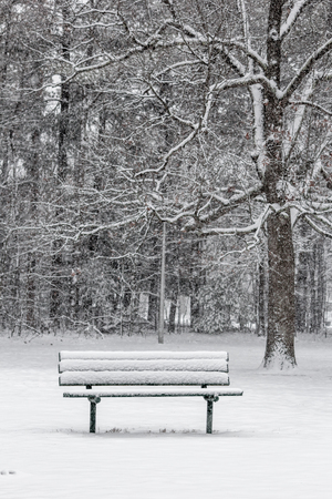 Frosty snow covered bench at Slater Park on a snowy winter day