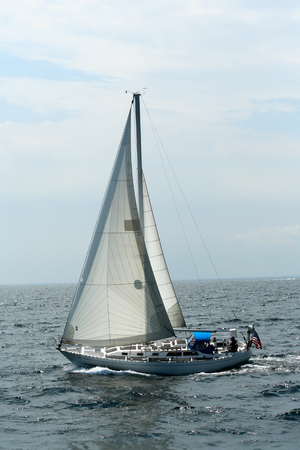 Sailing near the whales in Boston Massachusetts Banco de Imagens