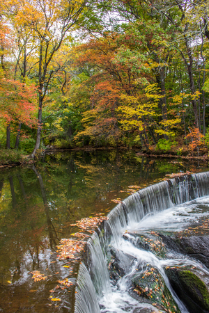 Horseshoe waterfall surrounded by fall foliage in Seekonk