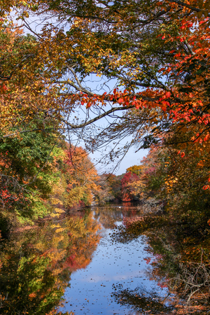 View of a river framed by fall foliage Stockfoto