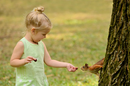Kid girl feeds squirrel in the park