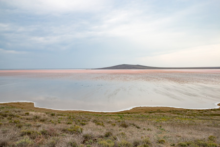 Pink salt lake in the daytime autumn season
