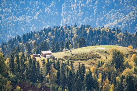 Field forest mountains houses far away in the autumn 스톡 콘텐츠 - 119443466