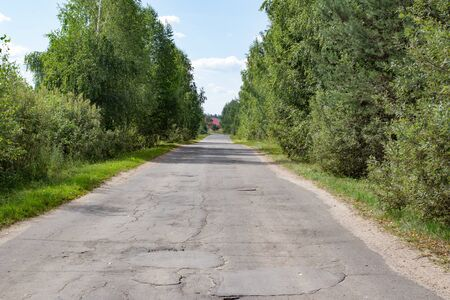 Road in Russian forest in the summer time