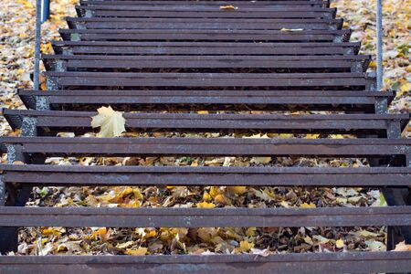 Metal staircase with yellow leaves in autumn