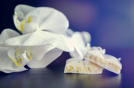 porous: Pieces of aerated porous white chocolate on a dark wooden background with white orchid.