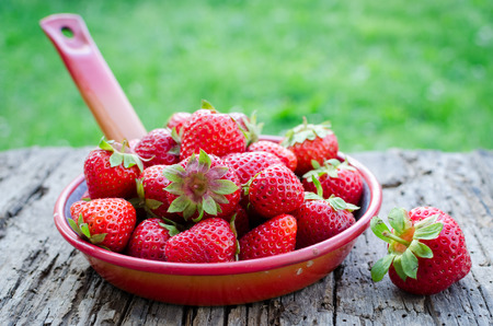 Freshly harvested strawberries. Metal colander filled with succulent juicy fresh ripe red strawberries on an old wooden textured table top on background of green grass. Summer concept. Archivio Fotografico