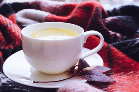 Cup of tea with lemon and warm woolen blanket on window sill. Hot drink for rainy days. Hygge concept, autumn mood. Cozy autumn morning at home. Warm and comfy fall weekend. Relaxing in cold weather.