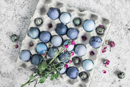 Blue Easter eggs with pink flowers. Easter composition on grey concrete