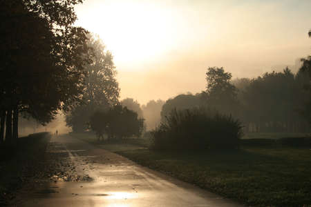 Autumn morning on the prospectus Unsubdued Stock Photo - 2933721