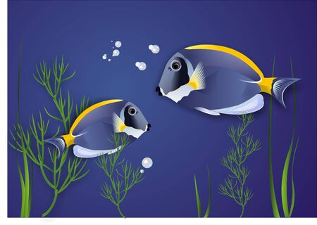The vector image of two fishes