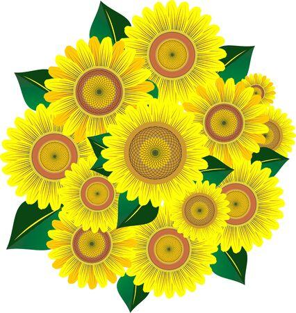 Bouquet sunflower Stock Photo - 3114173