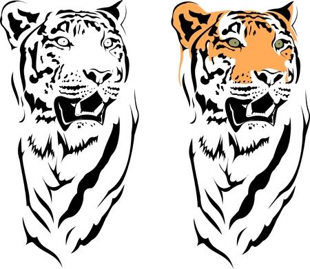 tigre blanc: ann�e de tigres Illustration