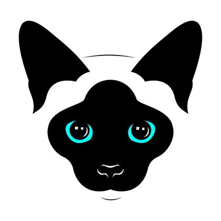 blue siamese: Head of Siamese cats. Vector drawing