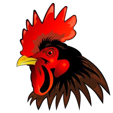 beaks: mascotte di vettore di capo gallo Vettoriali