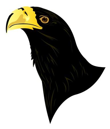 signmaker: Eagle profile Illustration