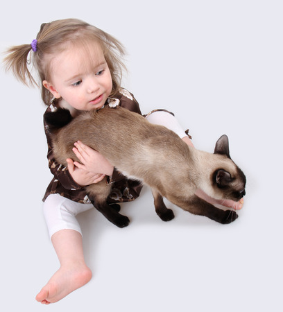 Baby girl sitting on a gray background with cat