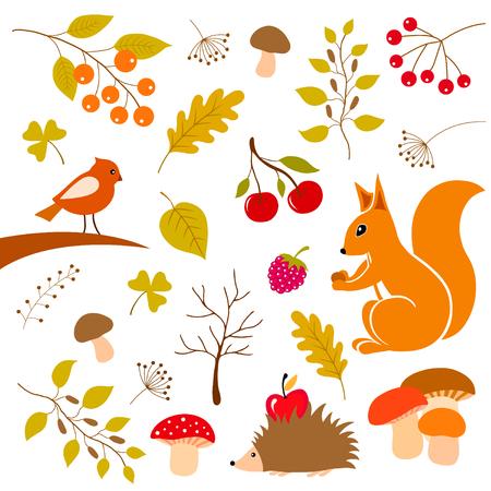 Autumn floral elements