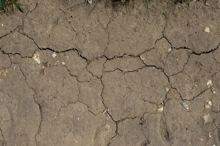 Ground texture background of brown desert soil, dusty land, dry earth, clay and sand. Climate change, global warming concept