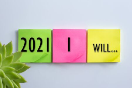 Home plant in soft focus, different colour of sticky notes with sign 2021 I Will.... on white background