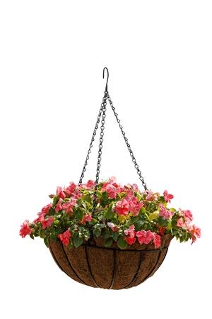Floral numerals photo