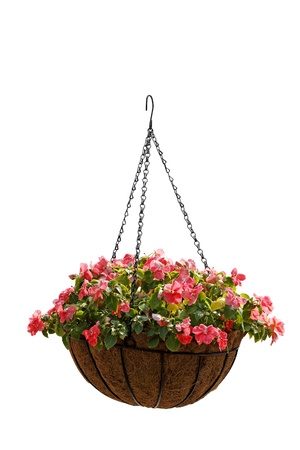 hanging basket: Floral numerals