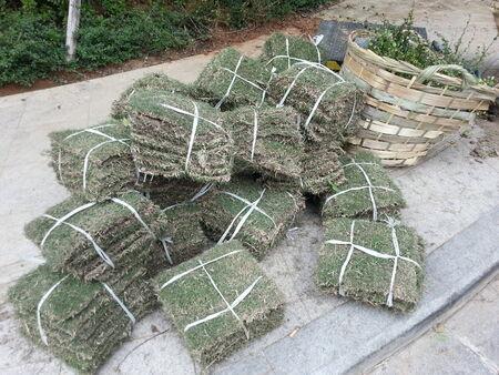 Bundles of turfs