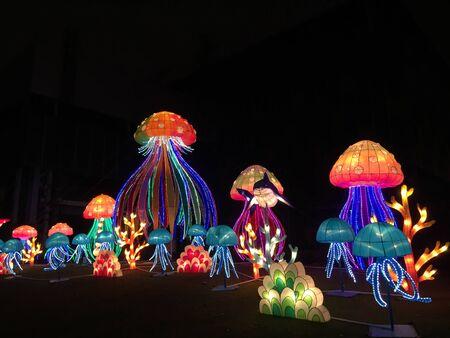 Ocean theme holiday lanterns