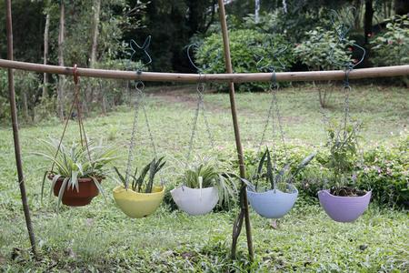 opknoping planten