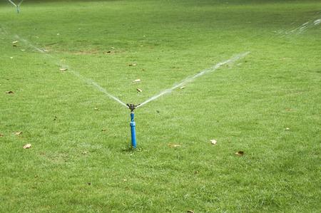 Working sprinkler on grassland