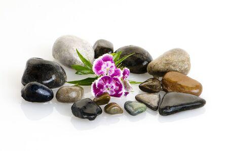 zen stones, flowers, white leaves