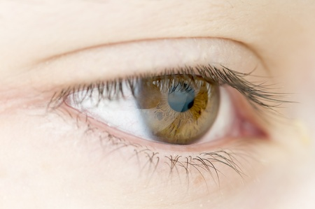 hazel eyes Stock Photo - 10541836