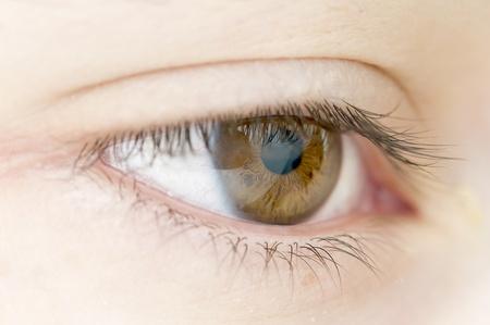 hazel eyes: ojos de color avellana