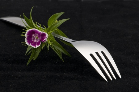 fork in black background with flower