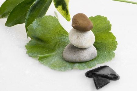 spa still life leaves and stones Stock Photo - 10763939