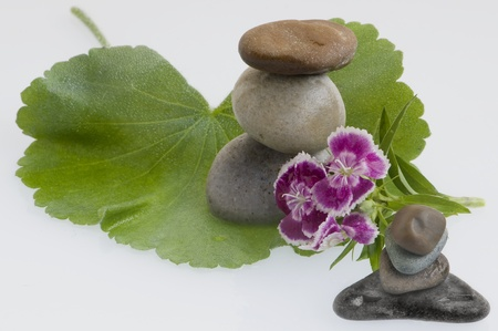 spa still life with flowers and stones Stock Photo