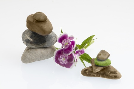 spa still life with flowers and stones Stock Photo - 10763628