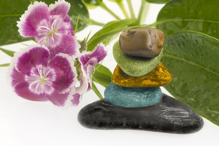 spa still life with flowers and stones Stock Photo - 10764002