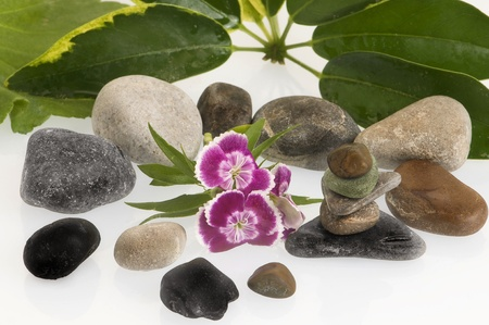 flower photos: spa still life with flowers and stones Stock Photo