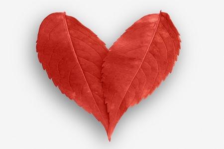 corazones: corazón de hojas rojas