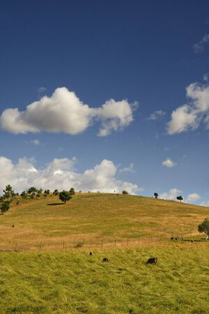 Typical landscape of Alentejo, Portugal Stock Photo