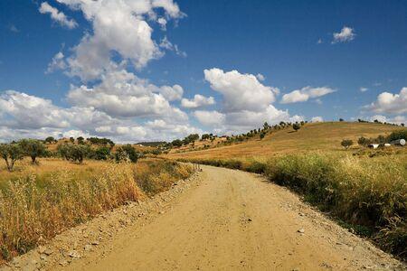 Typical landscape of Alentejo, Portugal Stock Photo - 4669950