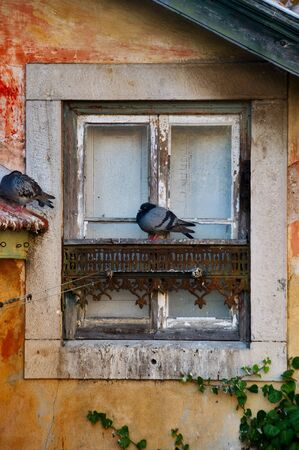 Typical old window with two sleepy pigeons in Sintra Village, Portugal Stock Photo