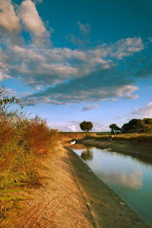 Typical landscape of Ribatejo region in Portugal  Stock Photo