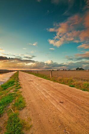 Rural road near a ricefield