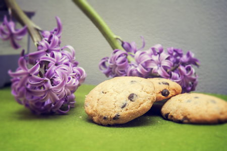 hyacinth, cookies  on a green background photo